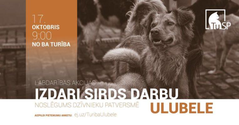 """Noslēguma pasākums dzīvnieku patversmē """"Ulubele"""""""